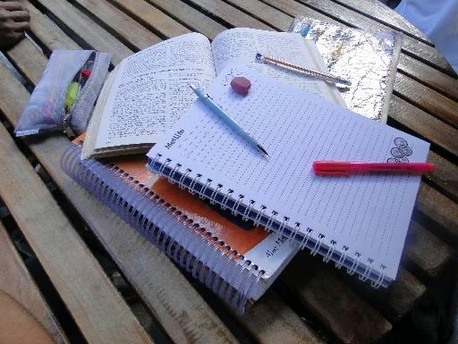 Estude mais que nunca (Foto: Divulgação)